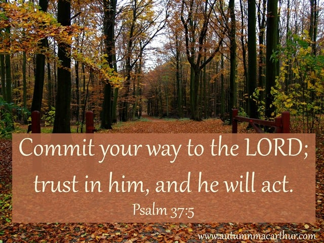 "Image of woods, with Bible verse ""Commit your way to the LORD, trust in Him, and He will act"" Psalm 37:5, by Christian romance author Autumn Macarthur"