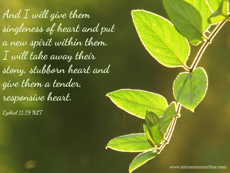 Image of new green leaves with Bible verse, from Christian romance author Autumn Macarthur's blog