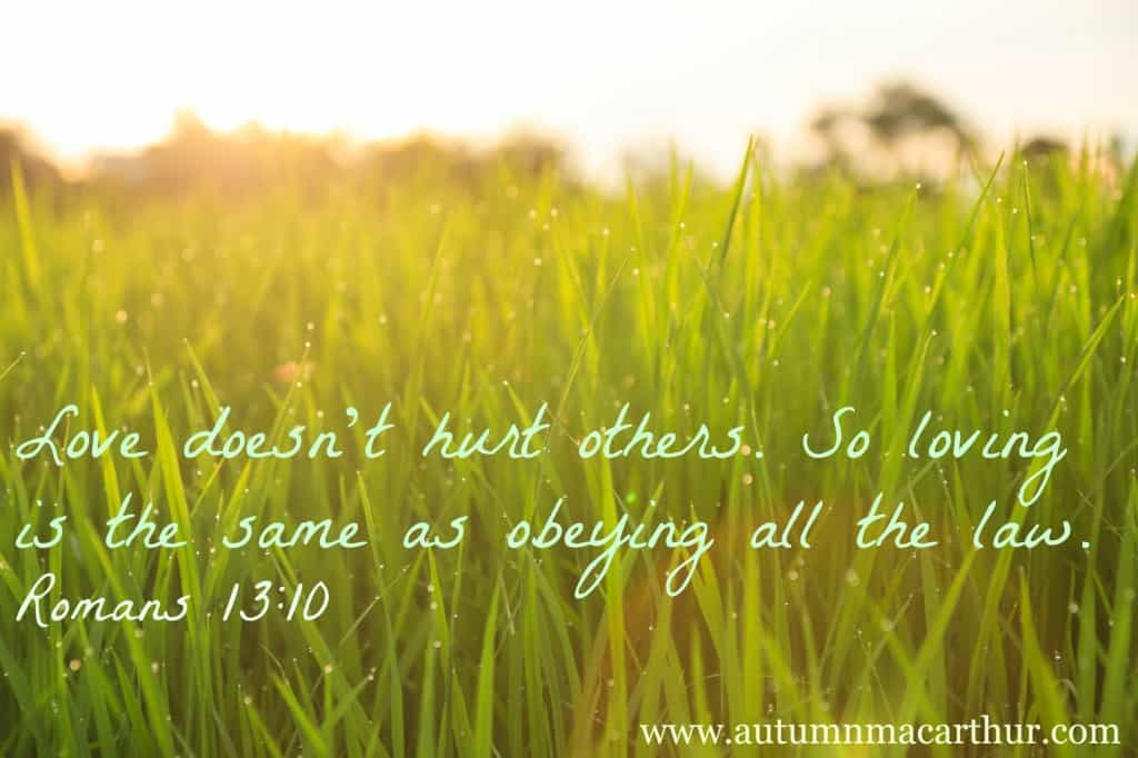 Image of organic rice field with dew drops during sunset via Bigstock plus Bible verse Romans 13:10