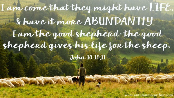 Image of shepherd with sheep and Bible verses John 10:10-11, from inspirational romance author Autumn Macarthur