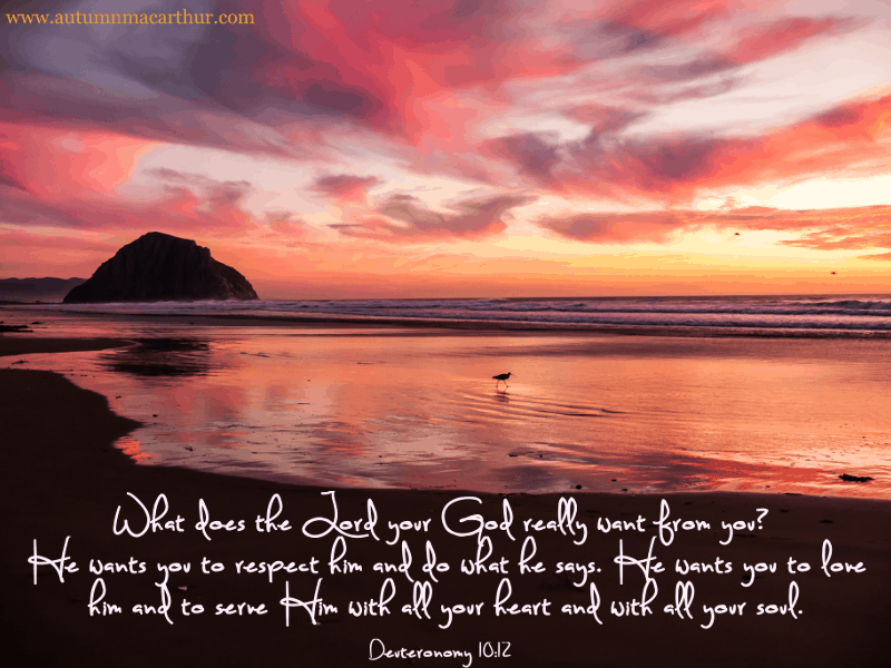 Image of beach at sunrise or sunset with Bible verse Deuteronomy 10:12, from inspirational romance author Autumn Macarthur