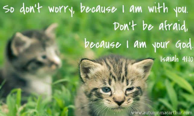 Image of tabby kittens with Bible verse Isaiah 41:10, from inspirational romance author Autumn Macarthur