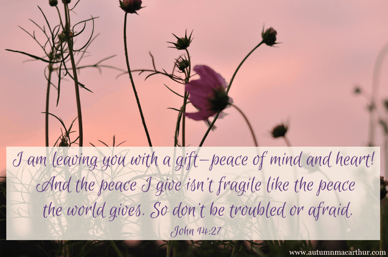 Image ofpink cosmos flowers at sunset, with Bible verse John 14:27, from inspirational romance author Autumn Macarthur