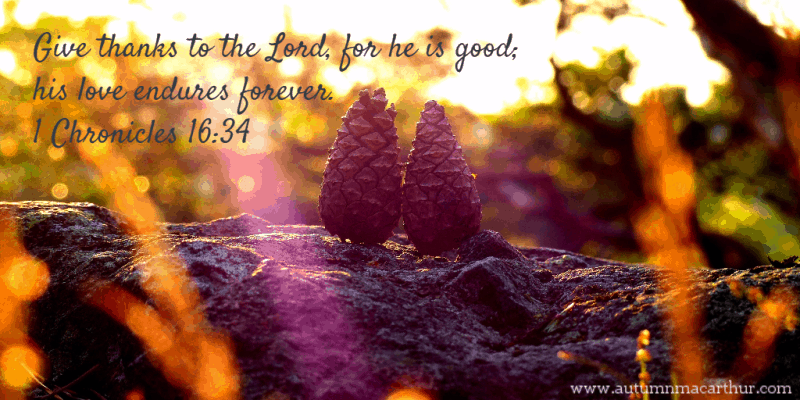 "Autumn image with pine cones, and Bible Verse ""Give thanks to the Lord for He is good,"" from inspirational romance author Autumn Macarthur"
