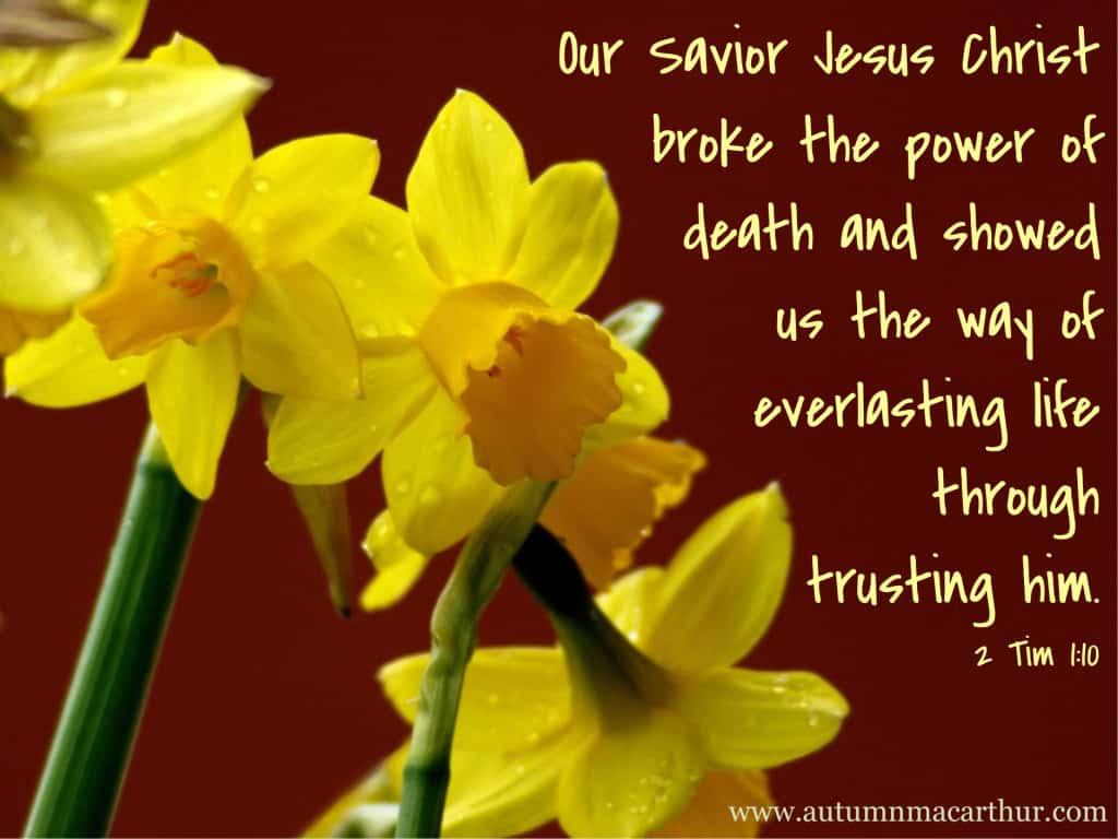 Everlasting life