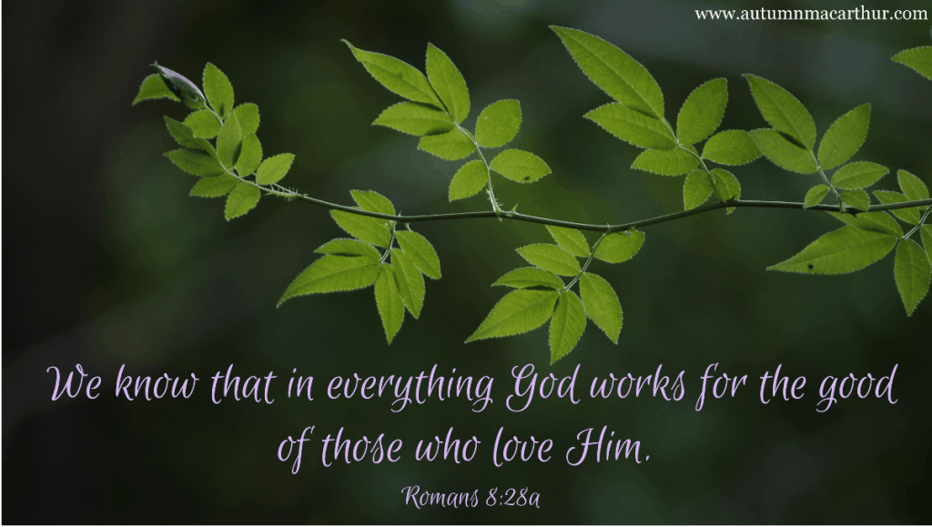 """Image of new spring leaves with Bible verse Romans 8:28 """"In everything God works for the good of those that love him"""". From Autumn Macarthur's blog."""