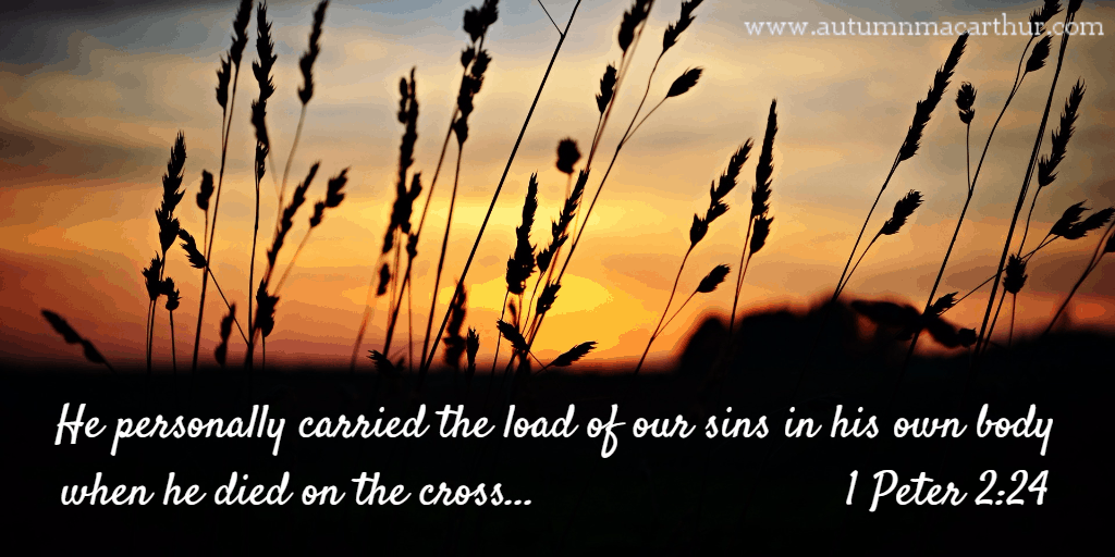 "Image of sunset with Bible verse 1 Peter 2:24- ""Her carried our sins..."" from inspirational romance author Autumn Macarthur"