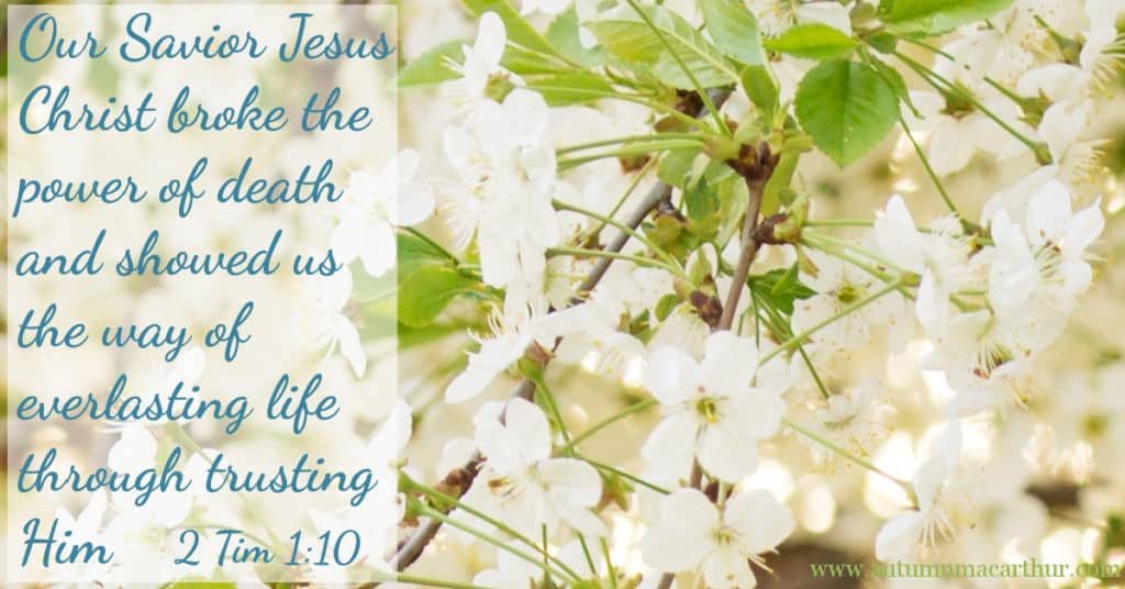 image of spring blossom with Bible verse 2 Tim 1:10 - Jesus broke the power of death!